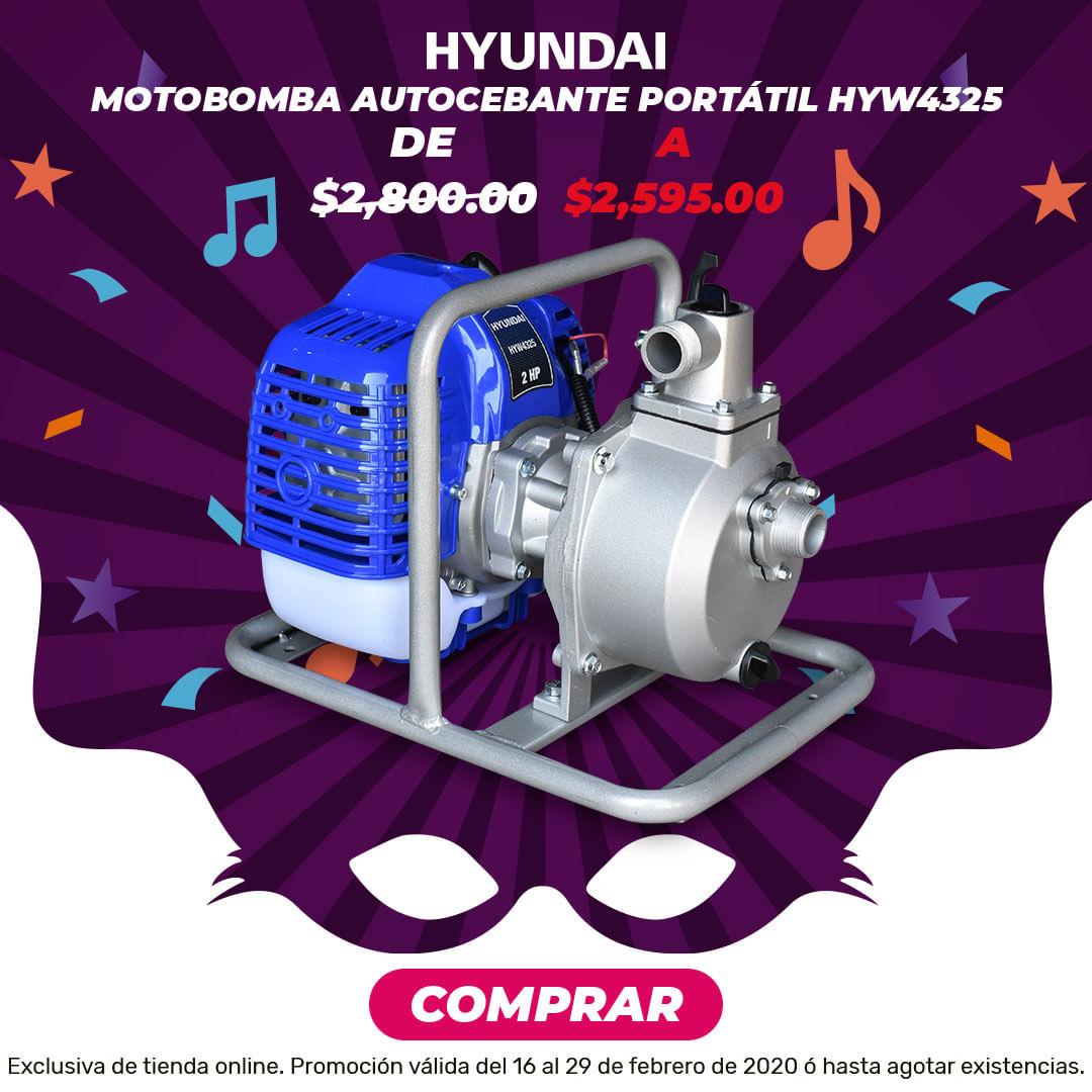 Motobomba Portátil HYW4325