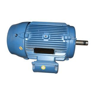 Electricos_rmw1500_Weg_1