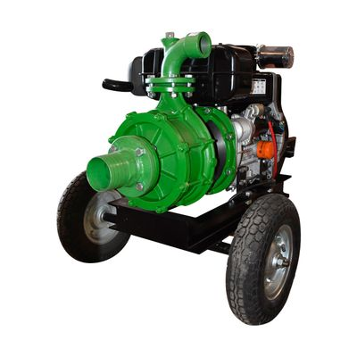 Diesel-mcd6an50rr-Raiker-1